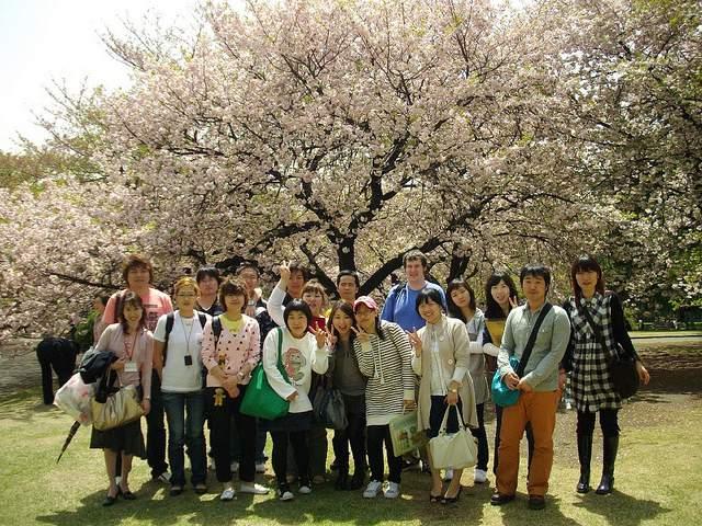 Cơ hội việc làm cho tu nghiệp sinh du học sinh Nhật Bản