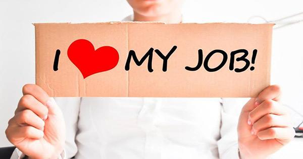 Bạn yêu công việc đến mức độ nào