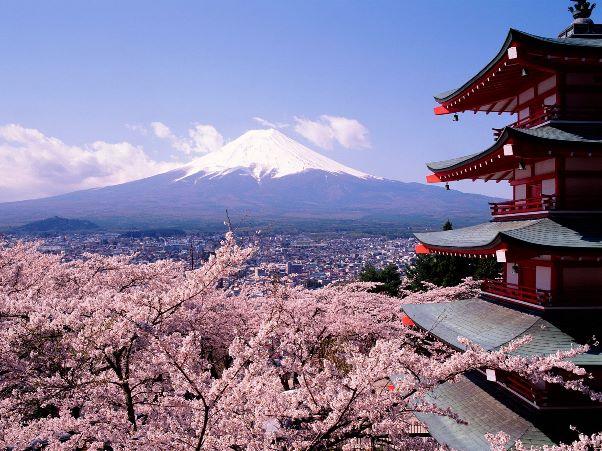 Cùng Iconic khám phá văn hóa người Nhật (phần 1)