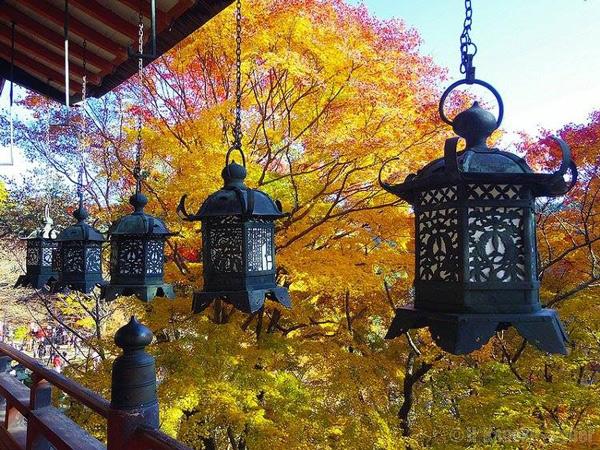 Tìm hiểu văn hóa lich sử Nhật Bản