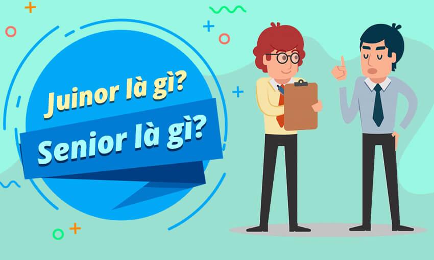Junior là gì? Senior là gì?