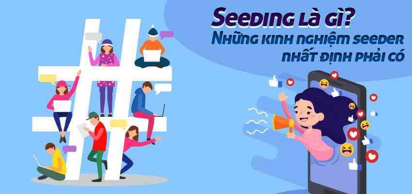 Seeding là gì? Những kinh nghiệm mà một seeder nhất định phải có