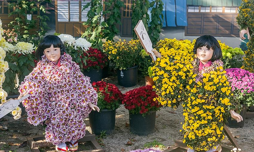 Các lễ hội trong tháng 11 ở đất nước Nhật Bản