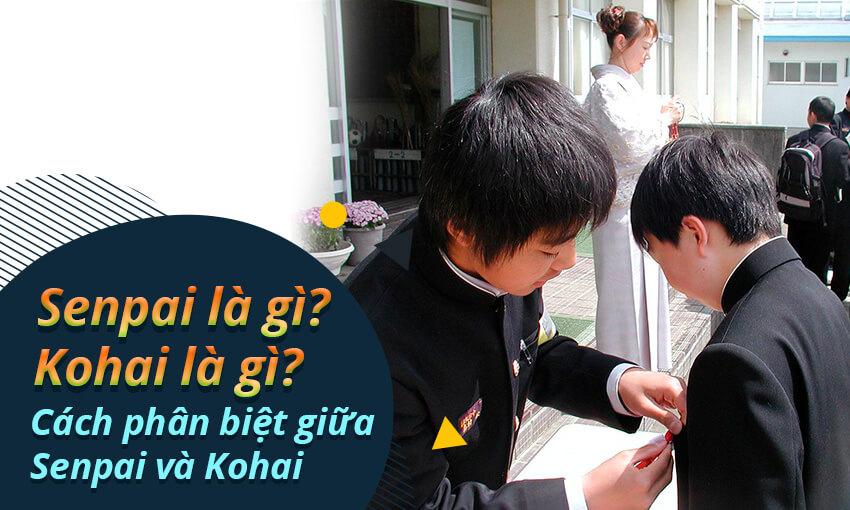 Senpai là gì? Kohai là gì? Cách phân biệt giữa Senpai và Kohai
