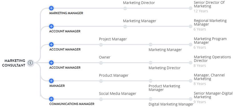 Con đường sự nghiệp Marketing Consultant