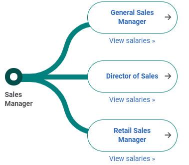 Sales Manager là gì