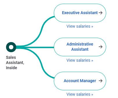 Sales Assistant là gì