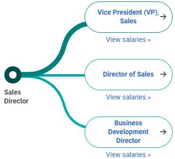 con đường sự nghiệp Sales Director
